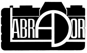 LABRADOR PNG